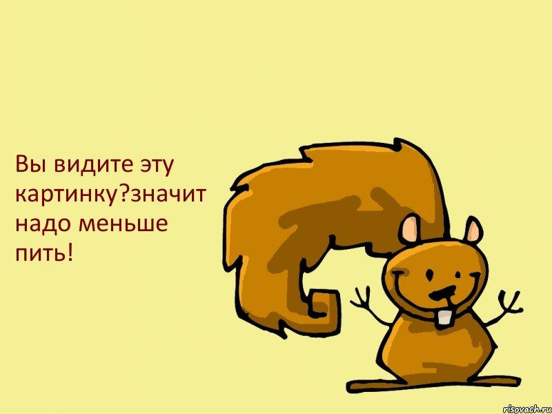 belka_29505712_big_.jpg