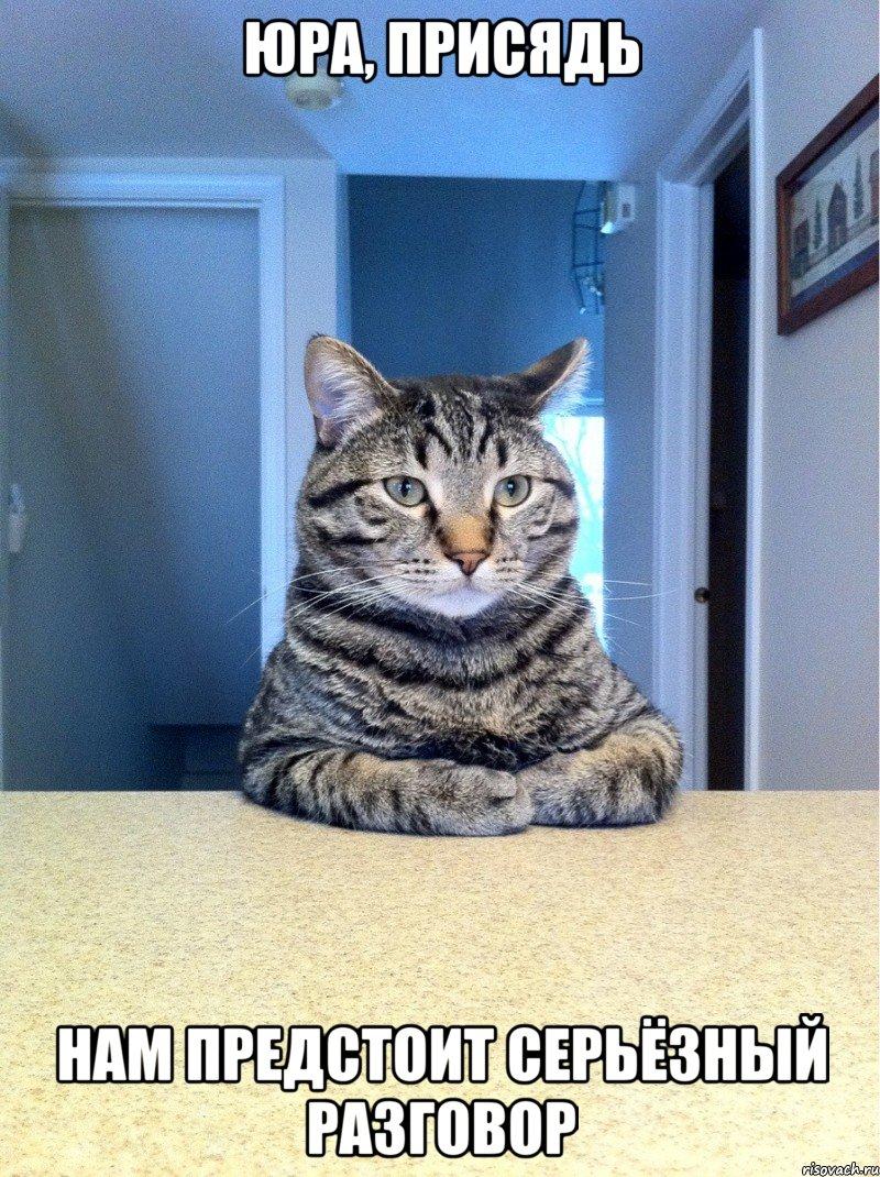Предстоит серьёзный разговор мем кот