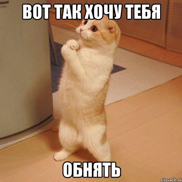 http://risovach.ru/upload/2013/09/mem/kote_28931460_orig_.jpg