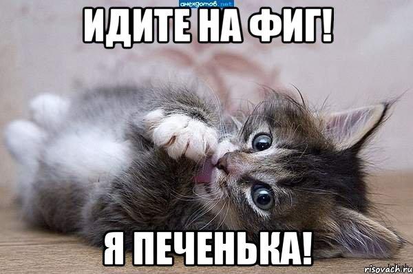 http://risovach.ru/upload/2013/09/mem/kote_30083065_orig_.jpg