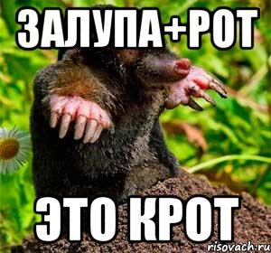 porno-pyanaya-suka