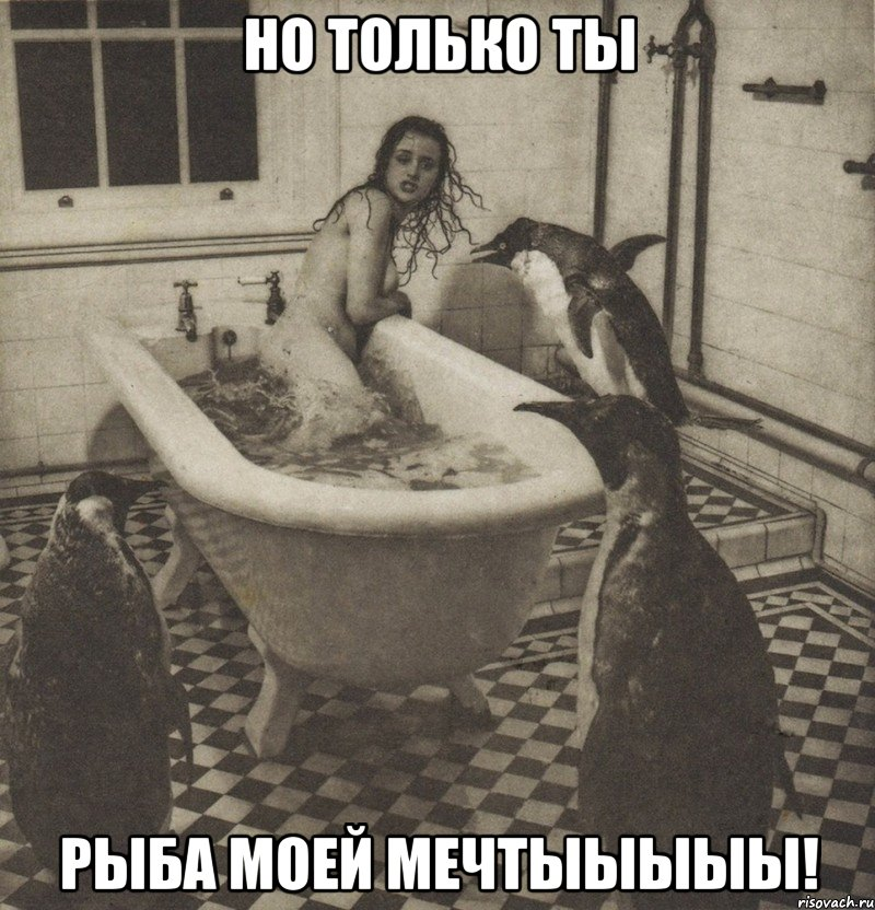 ты рыба: