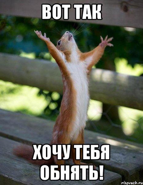 http://risovach.ru/upload/2013/10/mem/belka_31600983_orig_.jpg