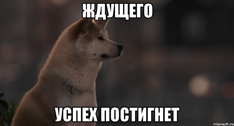 http://risovach.ru/upload/2013/11/mem/hatiko_34544761_big_.png
