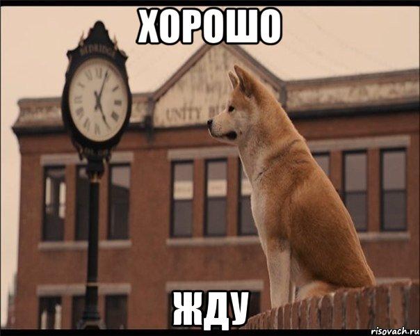 http://risovach.ru/upload/2013/11/mem/hatiko_35694044_orig_.jpeg