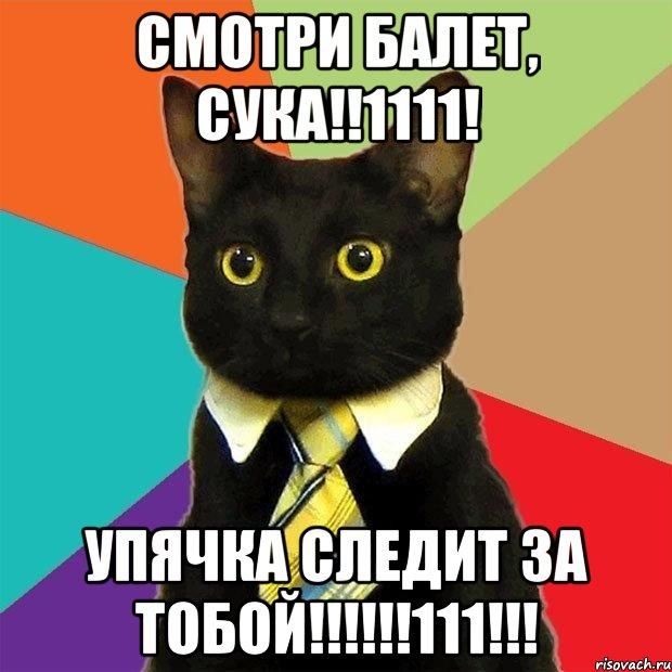 http://risovach.ru/upload/2013/11/mem/koshecka_35156171_orig_.jpg