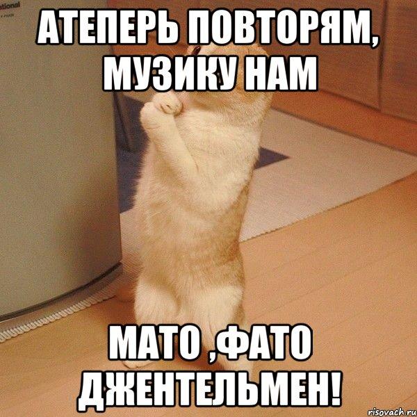 Мато фато