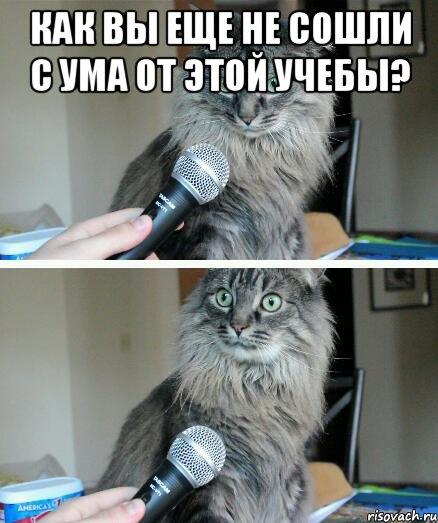 с ума сойти как: