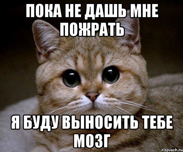 не дашь мне: