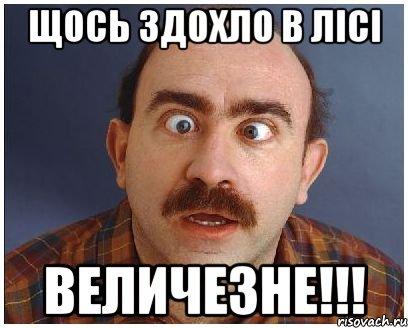 Суд обязал прокуратуру начать расследование относительно похищения Корбана, – адвокат Шевчук - Цензор.НЕТ 2761
