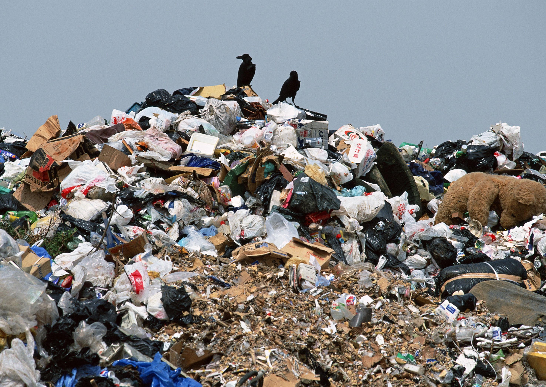 Тарифы на вывоз мусора снизят также в Приморье и Якутии, где прокуроры нашли нарушения