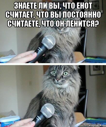 kot-s-mikrofonom_37622195_orig_.jpeg