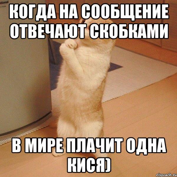 жопа из скобочек-ьд2