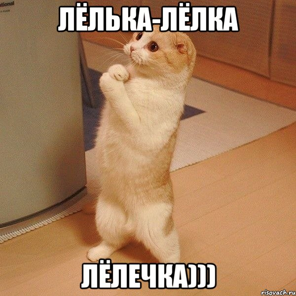 http://risovach.ru/upload/2013/12/mem/kote_37961762_orig_.jpg