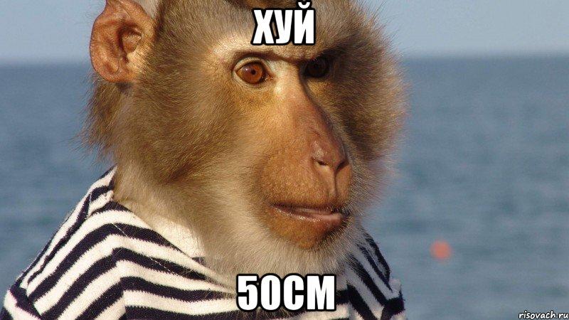 50см.хуй