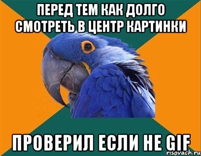 смотреть попугай: