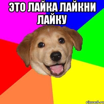 Это лайка лайкни лайку мем advice dog