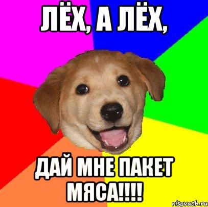 России это я леха в собаке Виды термобелья Выбор