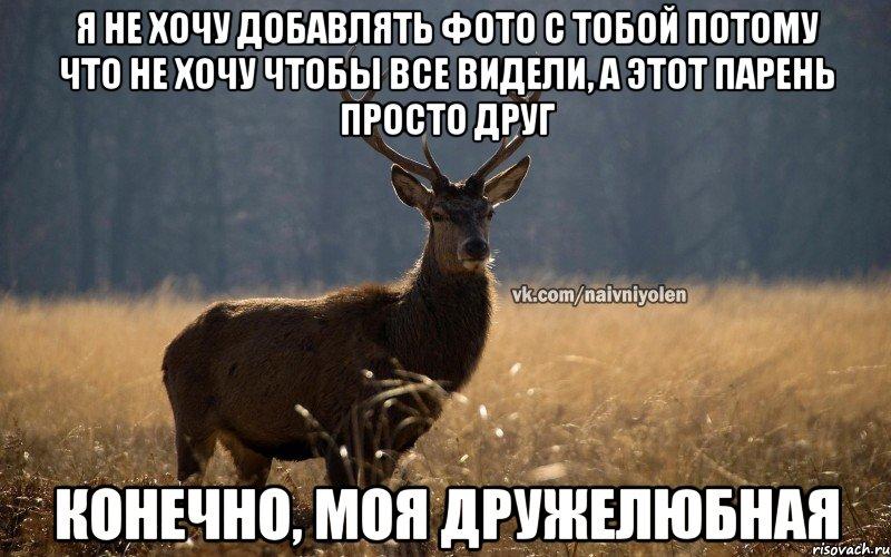 фото олень мем
