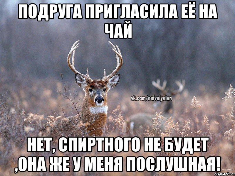 foto-tolstaya-kishka