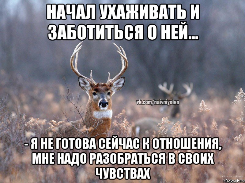 продажу частный чувство когда готова к отношениям Воронежской области