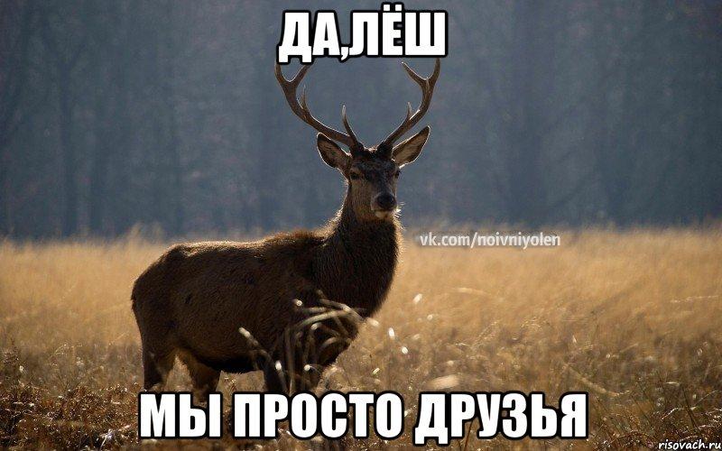 ДА,ЛЁШ МЫ ПРОСТО ДРУЗЬЯ, Мем Наивный Олень vk2 - Рисовач .Ру