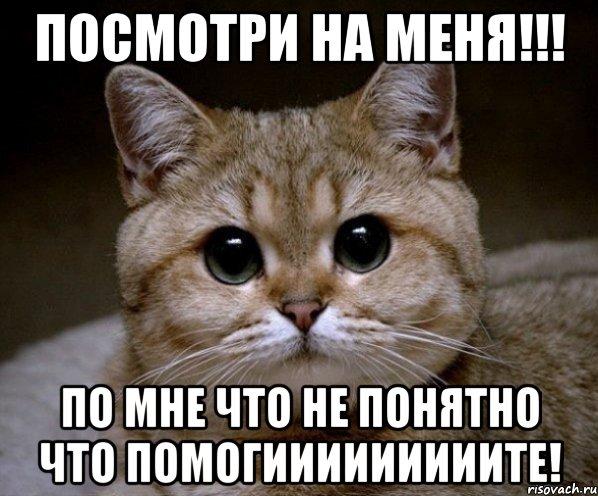 http://risovach.ru/upload/2014/01/mem/pidrila-ebanaya_41436584_orig_.jpeg