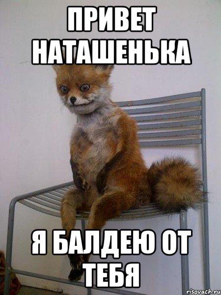 привет Наташенька я балдею от тебя, Мем Упоротая лиса - Рисовач .Ру