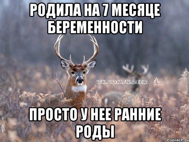 yvayva_41254197_orig_.jpeg