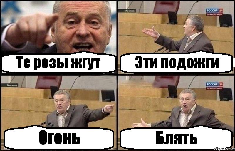 baltiyskiy-klan-vse-babi-blyadi