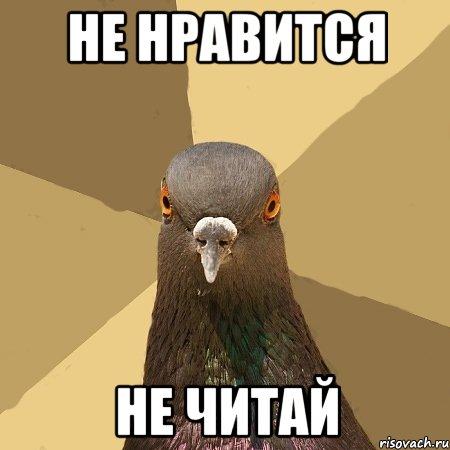 http://risovach.ru/upload/2014/02/mem/golub_43140315_orig_.jpg