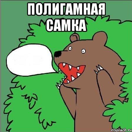 Проститутка медведь