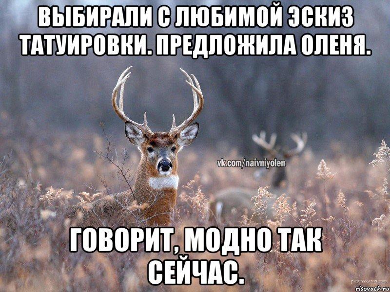 тату эскиз олень: