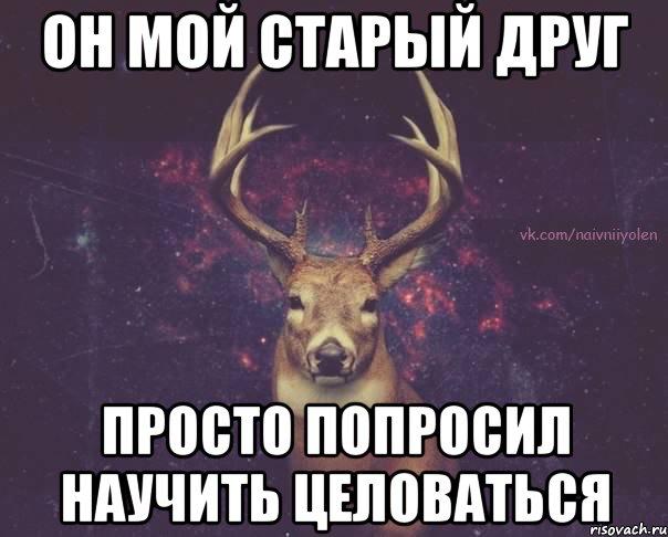 naivnyy-olen_42724629_orig_.jpeg