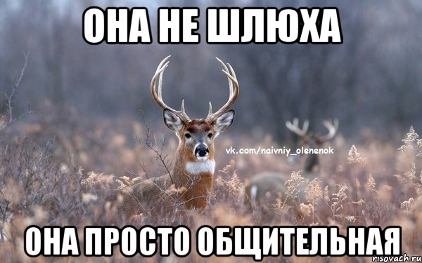 http://risovach.ru/upload/2014/02/mem/naivnyy-olenenok_42356580_orig_.jpeg