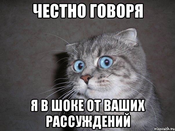 http://risovach.ru/upload/2014/02/mem/udivlyonnyy-kot_42694090_orig_.jpeg