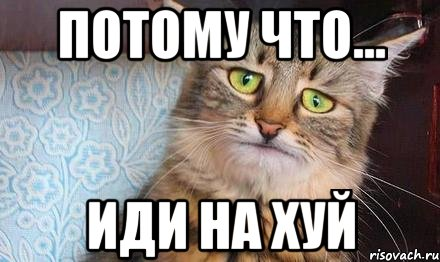 porno-v-stringah-devushki-video