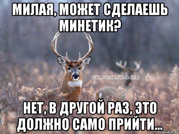 samie-bolshie-siski-sayta