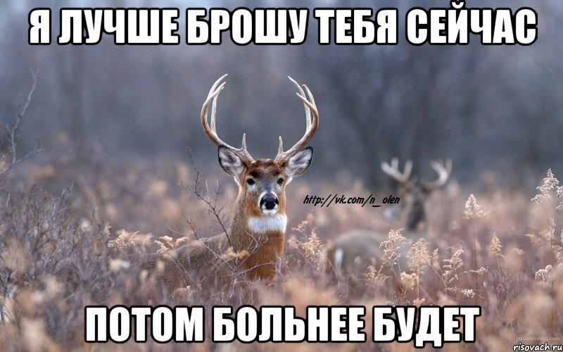 naivnyy-olen_45326216_orig_.jpeg