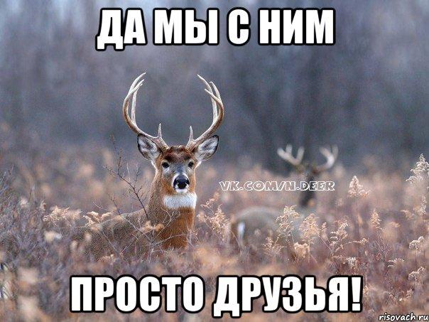 Да мы с ним просто друзья!, Мем Наивный олень - Рисовач .Ру