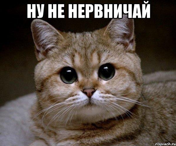 В России растет социально-экономическая и политическая напряженность, - доклад Комитета гражданских инициатив Кудрина - Цензор.НЕТ 4645