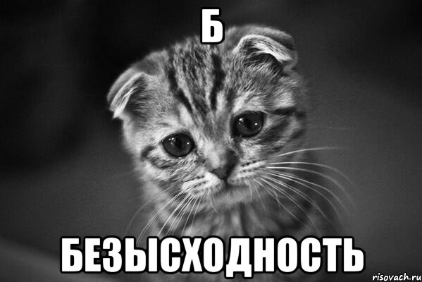 http://risovach.ru/upload/2014/04/mem/bezyshodnost_47447866_orig_.jpeg