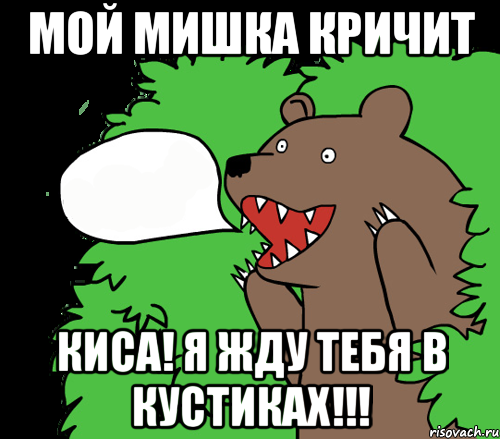 медведь кричит из кустов шлюхи