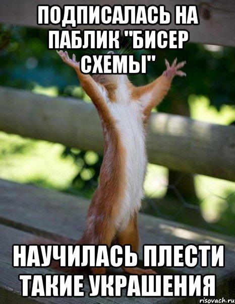 Мем белка молится