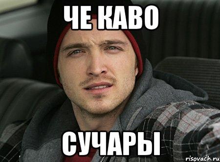 сучары русские фото