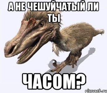 http://risovach.ru/upload/2014/07/mem/velo_55315918_orig_.jpeg