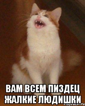 zhalkie-lyudishki_55947995_orig_.jpeg