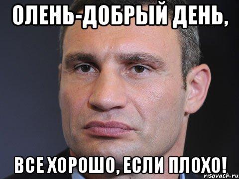 Ляп в прямом эфире: вместо упавшего с велосипеда Кличко показали сбитого оленя - Цензор.НЕТ 2271