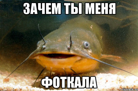 bol-pri-zanyatii-seksom-devushka