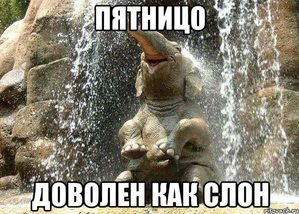 velikiy-hathi-izvecshaet-o-pyatnice_6091